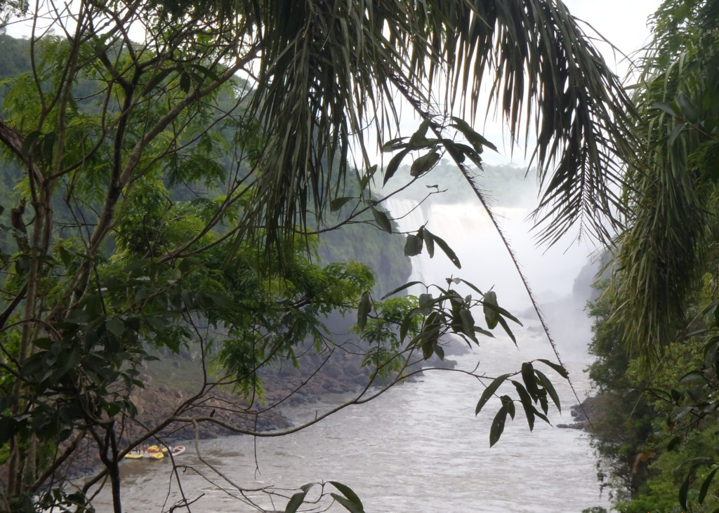 Odwieczne piękno natury w środku tropikalnego lasu, fot. Elien Gysen